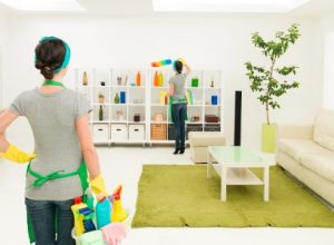 Superb Qualities to Look For When Hiring a Professional House Cleaning Service