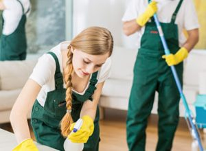 Which Upholstery Cleaning Services Are Right For Your Needs